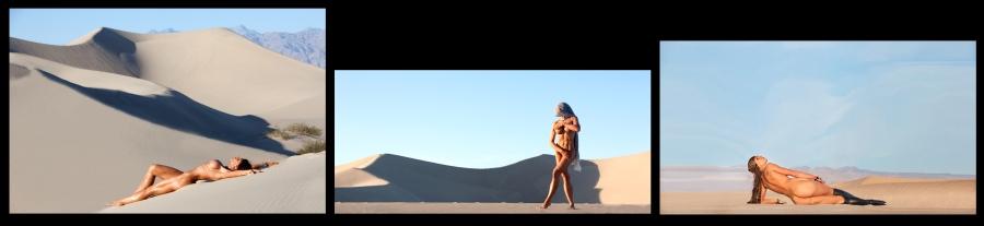 apa-desert_tryptich-